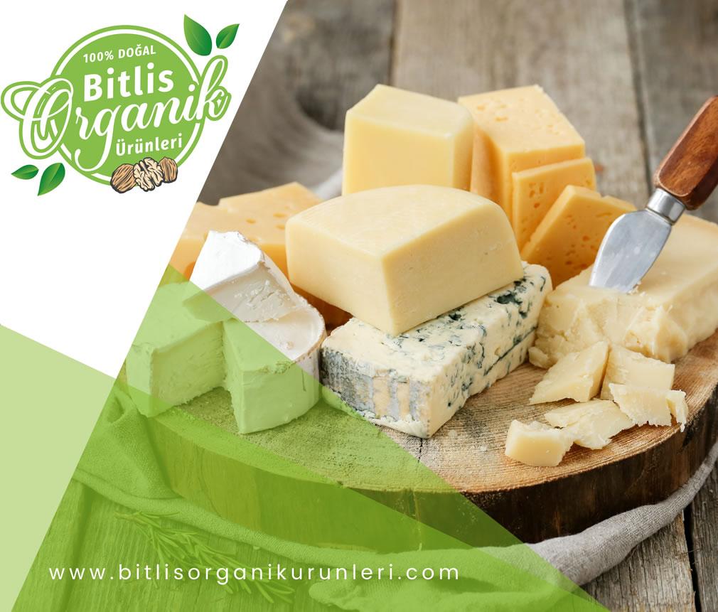 Neden Organik Ürünler Tercih Etmelisiniz?